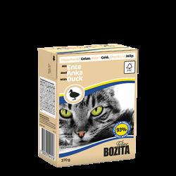 Bozita Cat su Antiena drebučiuose