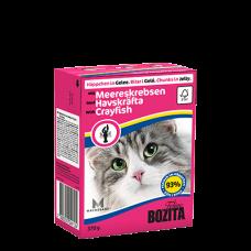 Bozita Cat su Vėžiais drebučiuose