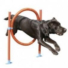Rosewood pet Hoop Jump