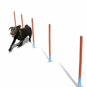 Rosewood pet  Slalom