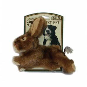 Country Pet Rabbit