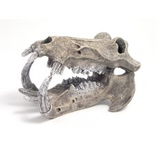 Rosewood pet Hippo Skull - Lrg