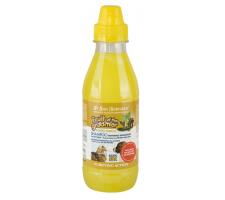 Iv San Bernard Imbierų-šeivamedžių šampūnas