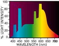 Sun-Glo spektras